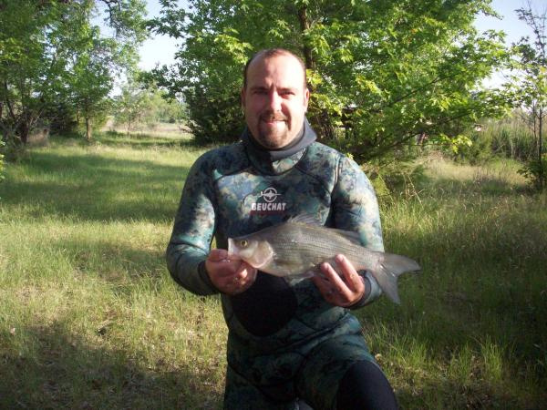 New State Record White Bass 2011